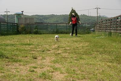 200905片山農園 (123)