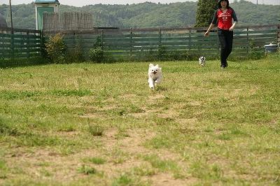 200905片山農園 (124)