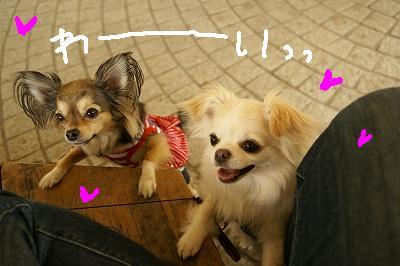 5-13デート♪ (84)