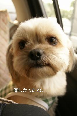 200905かえち (64)