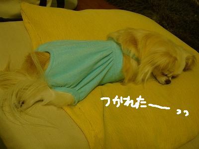 200907まりちゃんと。 (39)