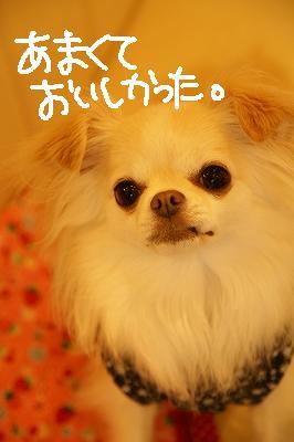 200908名張 (54)