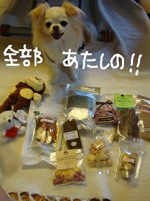 200908ニール箕面 (95)