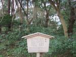 kanazawa090320_1095.jpg