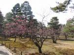 kanazawa090320_1115.jpg