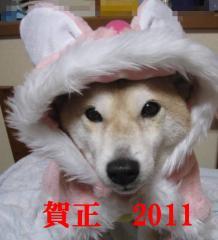 039_20110101042142.jpg
