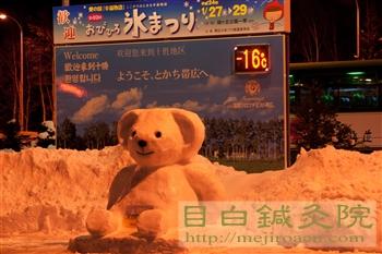 帯広鍼灸研修2012冬(3日目)6