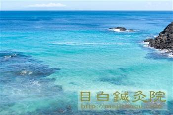 20110919伊豆の海3