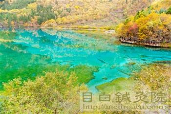 201110月九寨溝五花海1