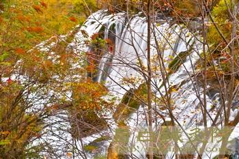 201110月九寨溝渓流1