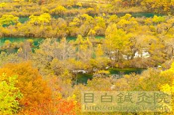 2011年10月九寨溝の紅葉と渓流5