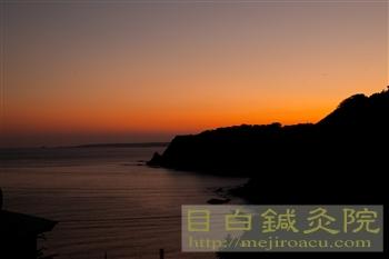 20111113稲取無農薬みかん4