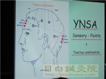 YNSA20111114理論スライドの様子
