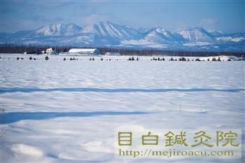 帯広鍼灸研修2012冬(3日目)2