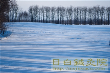 帯広鍼灸研修2012冬(3日目)3