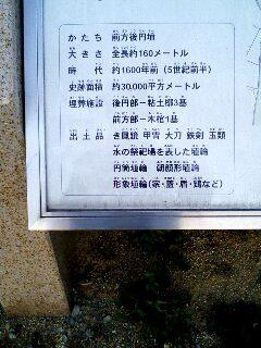 yao02