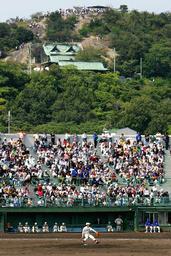 満員の球場の後方、山の上にも人が集まり試合を観戦した=4日午前、高砂市野球場で