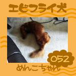 転校生ブログNo.52(2008.4.8)