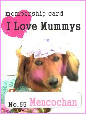I Love Mummys No.65  愛犬ロミオのワンダフル~