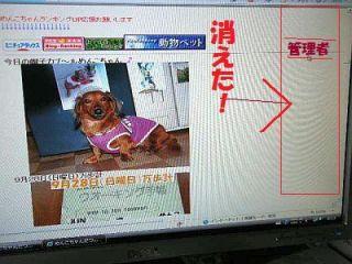 DSCN4948_20081001145901.jpg