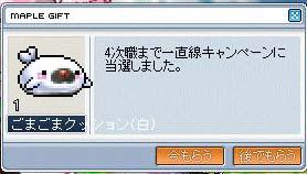 2007-03-25-09.jpg