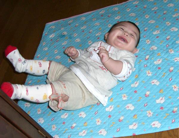 2006_0402taratoromimi0089-6.jpg
