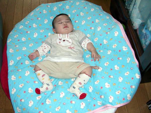 2006_0402taratoromimi0117-6.jpg