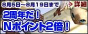banner_npoint.jpg