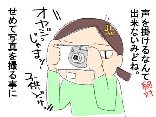 一目ぼれ3