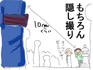 一目ぼれ4