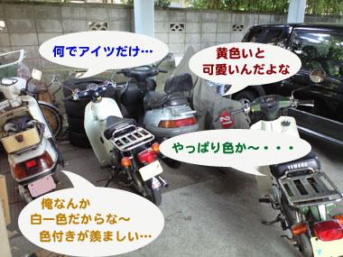 201004306.jpg