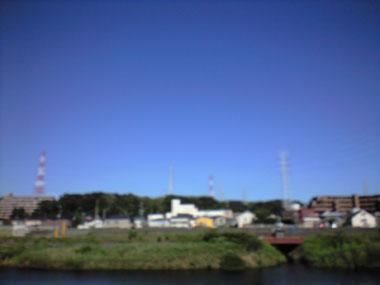 201008051.jpg