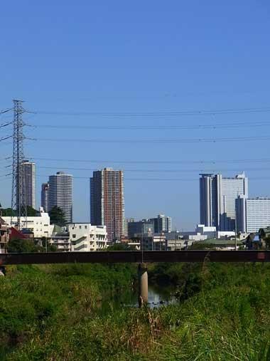 201009265.jpg