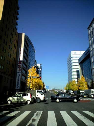 20101129.jpg