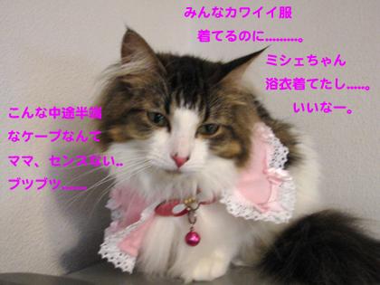 IMG_216599.jpg