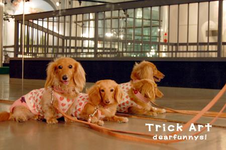 trick-artME7_20080802.jpg