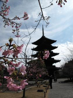 東寺の五重塔と桃