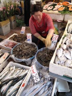 台北朝市魚
