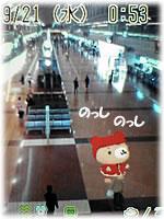 くーまんin羽田空港