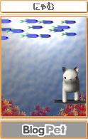 海猫にゃむさん