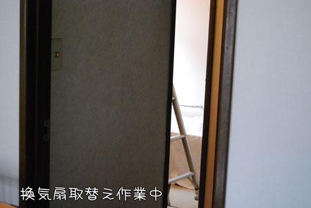 01_20100128120324.jpg