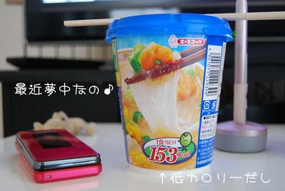 01_20100513101313.jpg
