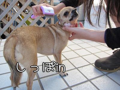 01_20101011104312.jpg