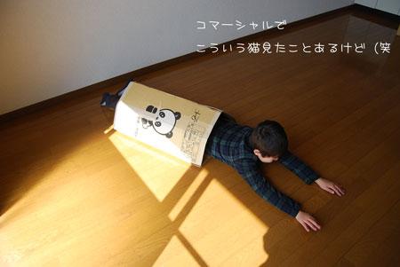 02_20100324163831.jpg