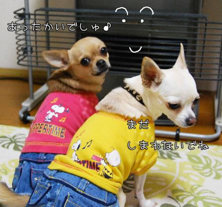 02_20100329080619.jpg