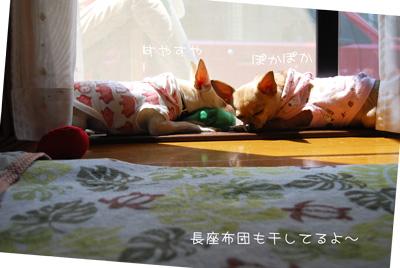 02_20100603093517.jpg
