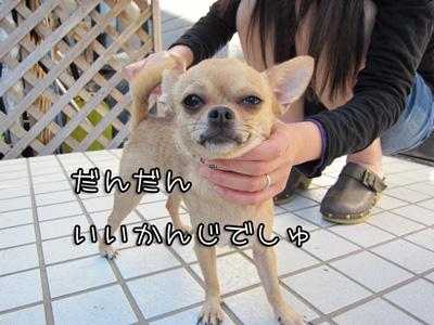 02_20101011104312.jpg