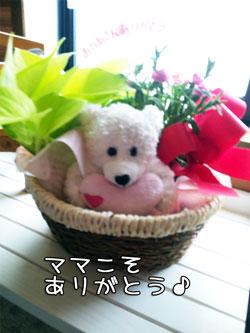 03_20100510131511.jpg