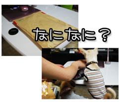 03_20100529105944.jpg