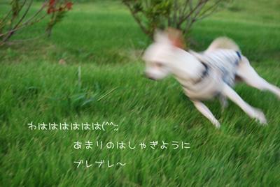 03_20100922163922.jpg